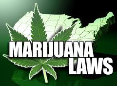 polygraph test for compliance with marijuana laws